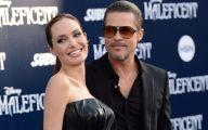 Angelina Jolie Pitt 23 Free Wallpaper