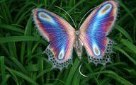 Are Butterflies Animals 29 Wide Wallpaper