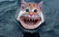 Extremely Bizarre Phobias 9 Desktop Wallpaper