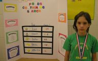 Science Fair Projects 16 Desktop Background