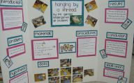 Science Fair Projects 17 Background