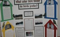 Science Fair Projects 21 Desktop Background