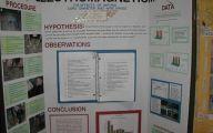 Science Fair Projects 8 Free Hd Wallpaper