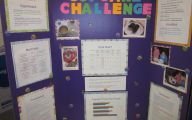 Science Fair Projects 9 Free Wallpaper