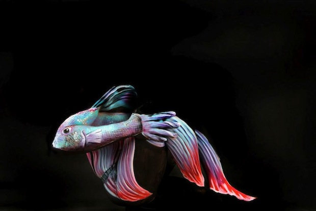 Female Body Art Form Photography 8 Wide Wallpaper Listtoday
