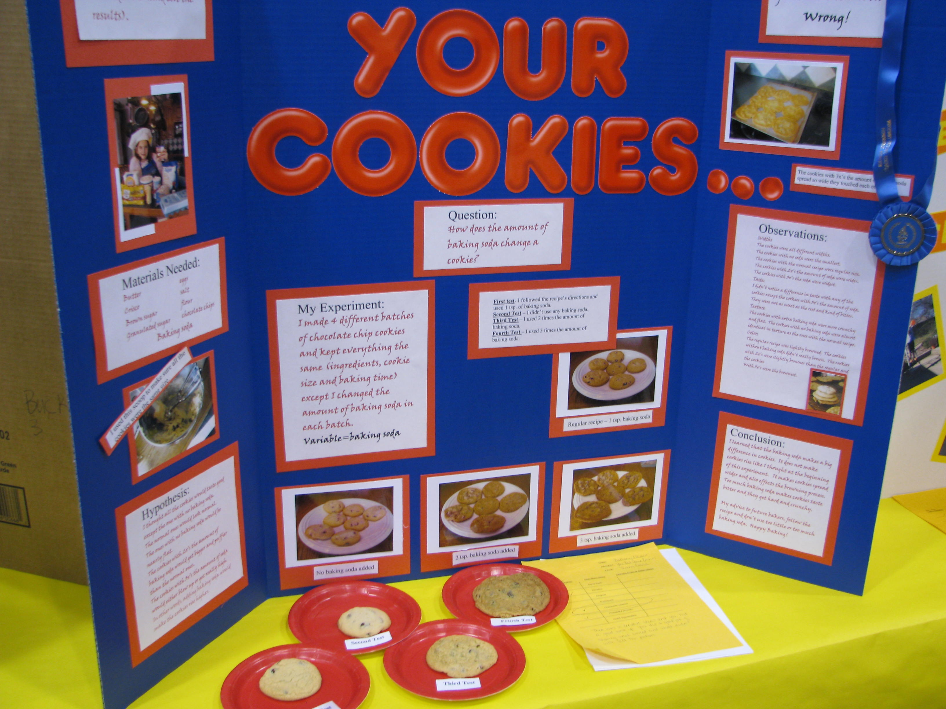 science fair projects on electricity