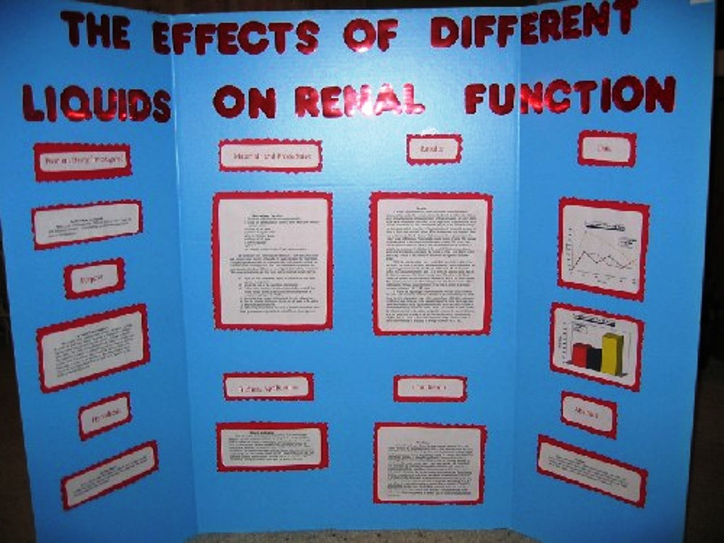 Buy completed science fair projects online » Online Writing Service